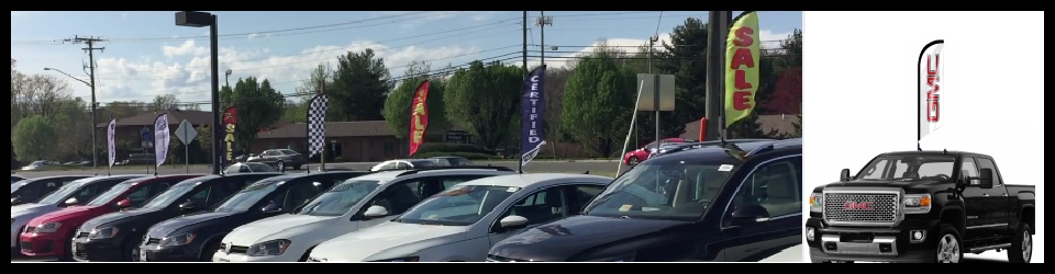 car-roof-flags-business-flags-mx